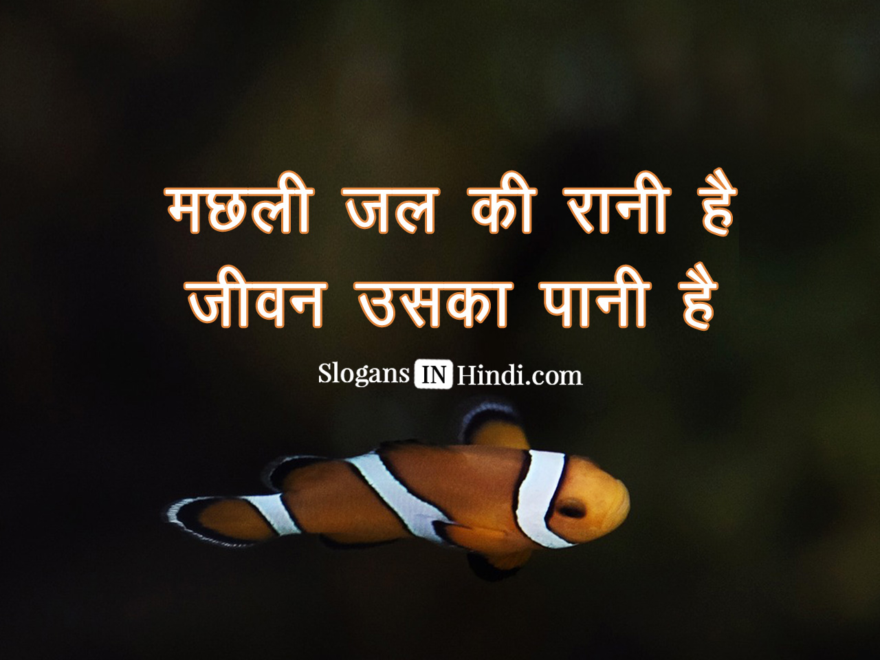 hindi slogans What are some famous slogans of indian national leaders update what are some of the most famous slogans in post-independence indian hindi-chini bhai.