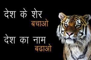Save Tiger Slogans